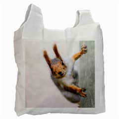Curious Squirrel Recycle Bag (two Side)