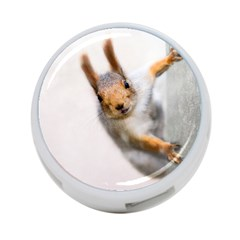 Curious Squirrel 4 Port Usb Hub (two Sides)