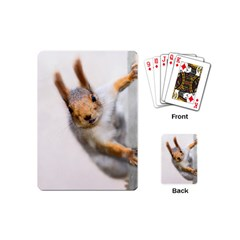 Curious Squirrel Playing Cards (mini)