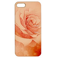 Wonderful Rose In Soft Colors Apple Iphone 5 Hardshell Case With Stand by FantasyWorld7