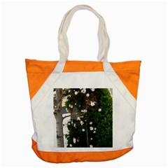 Balboa 1 Accent Tote Bag