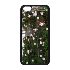 Balboa 1 Apple Iphone 5c Seamless Case (black) by bestdesignintheworld