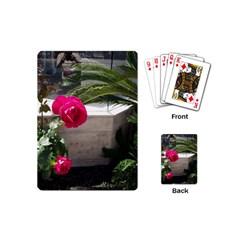 Balboa 5 Playing Cards (mini)