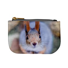 Squirrel Looks At You Mini Coin Purses