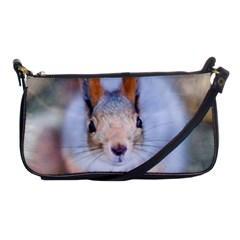 Squirrel Looks At You Shoulder Clutch Bags