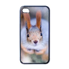 Squirrel Looks At You Apple Iphone 4 Case (black) by FunnyCow