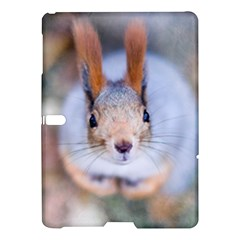 Squirrel Looks At You Samsung Galaxy Tab S (10 5 ) Hardshell Case
