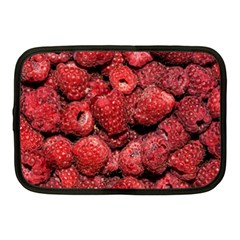 Red Raspberries Netbook Case (medium)  by FunnyCow
