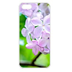 Elegant Pink Lilacs In Spring Apple Iphone 5 Seamless Case (white)