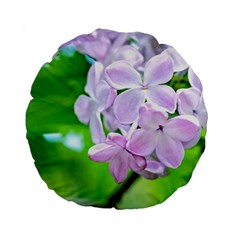Elegant Pink Lilacs In Spring Standard 15  Premium Round Cushions