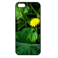 Yellow Dandelion Flowers In Spring Apple Iphone 5 Seamless Case (black)