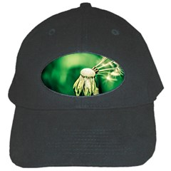 Dandelion Flower Green Chief Black Cap by FunnyCow