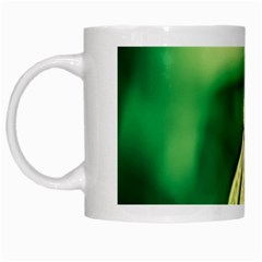 Dandelion Flower Green Chief White Mugs