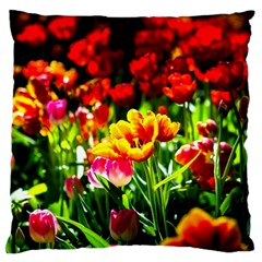 Colorful Tulips On A Sunny Day Large Flano Cushion Case (one Side) by FunnyCow
