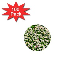 Green Field Of White Daisy Flowers 1  Mini Buttons (100 Pack)  by FunnyCow