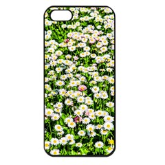Green Field Of White Daisy Flowers Apple Iphone 5 Seamless Case (black) by FunnyCow