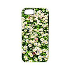Green Field Of White Daisy Flowers Apple Iphone 5 Classic Hardshell Case (pc+silicone) by FunnyCow
