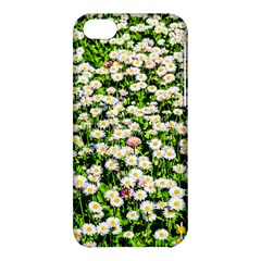 Green Field Of White Daisy Flowers Apple Iphone 5c Hardshell Case by FunnyCow