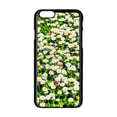 Green Field Of White Daisy Flowers Apple Iphone 6/6s Black Enamel Case by FunnyCow