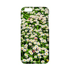 Green Field Of White Daisy Flowers Apple Iphone 6/6s Hardshell Case by FunnyCow