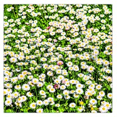 Green Field Of White Daisy Flowers Large Satin Scarf (square)