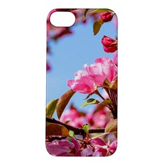 Crab Apple Blossoms Apple Iphone 5s/ Se Hardshell Case by FunnyCow