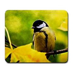 Tomtit Bird Dressed To The Season Large Mousepads