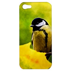 Tomtit Bird Dressed To The Season Apple Iphone 5 Hardshell Case by FunnyCow