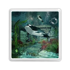 Wonderful Orca In Deep Underwater World Memory Card Reader (square) by FantasyWorld7