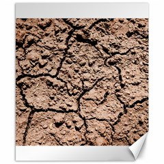 Earth  Light Brown Wet Soil Canvas 8  X 10