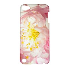 Pink Flowering Almond Flowers Apple Ipod Touch 5 Hardshell Case