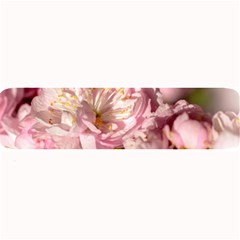 Beautiful Flowering Almond Large Bar Mats