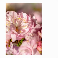 Beautiful Flowering Almond Small Garden Flag (two Sides)
