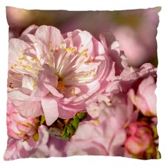 Beautiful Flowering Almond Large Cushion Case (one Side)