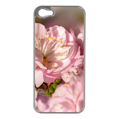 Beautiful Flowering Almond Apple Iphone 5 Case (silver)