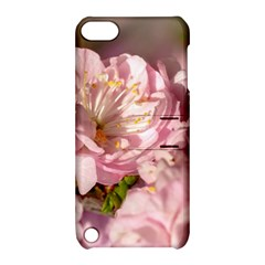 Beautiful Flowering Almond Apple Ipod Touch 5 Hardshell Case With Stand