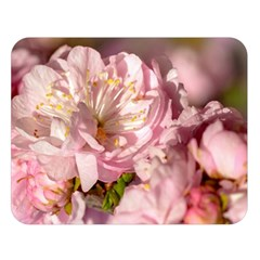 Beautiful Flowering Almond Double Sided Flano Blanket (large)  by FunnyCow