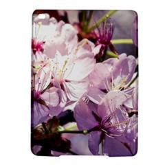 Sakura In The Shade Ipad Air 2 Hardshell Cases