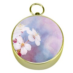 Pink Mist Of Sakura Gold Compasses by FunnyCow