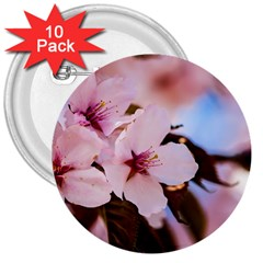 Three Sakura Flowers 3  Buttons (10 Pack)  by FunnyCow