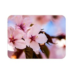 Three Sakura Flowers Double Sided Flano Blanket (mini)