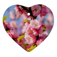 Flowering Almond Flowersg Ornament (heart)