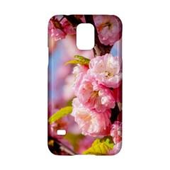 Flowering Almond Flowersg Samsung Galaxy S5 Hardshell Case