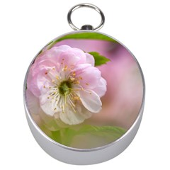 Single Almond Flower Silver Compasses