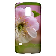Single Almond Flower Samsung Galaxy S5 Mini Hardshell Case