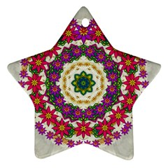 Fauna Fantasy Bohemian Midsummer Flower Style Ornament (star)