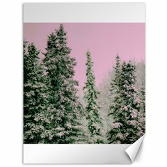Winter Trees Pink Canvas 36  X 48