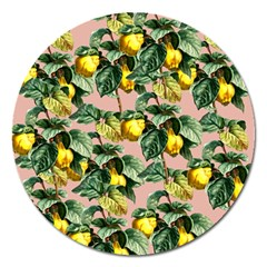 Fruit Branches Magnet 5  (round)