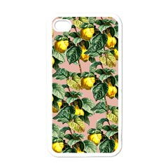 Fruit Branches Apple Iphone 4 Case (white)