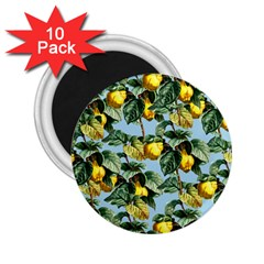 Fruit Branches Blue 2 25  Magnets (10 Pack)